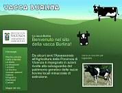 Home Sito Burlina